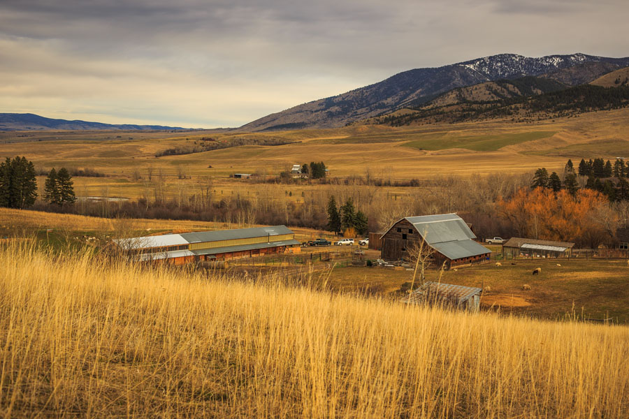 Willow Spring Ranch Bozeman, Montana