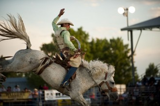 Montana Magazine -- Wild Horse Stampede