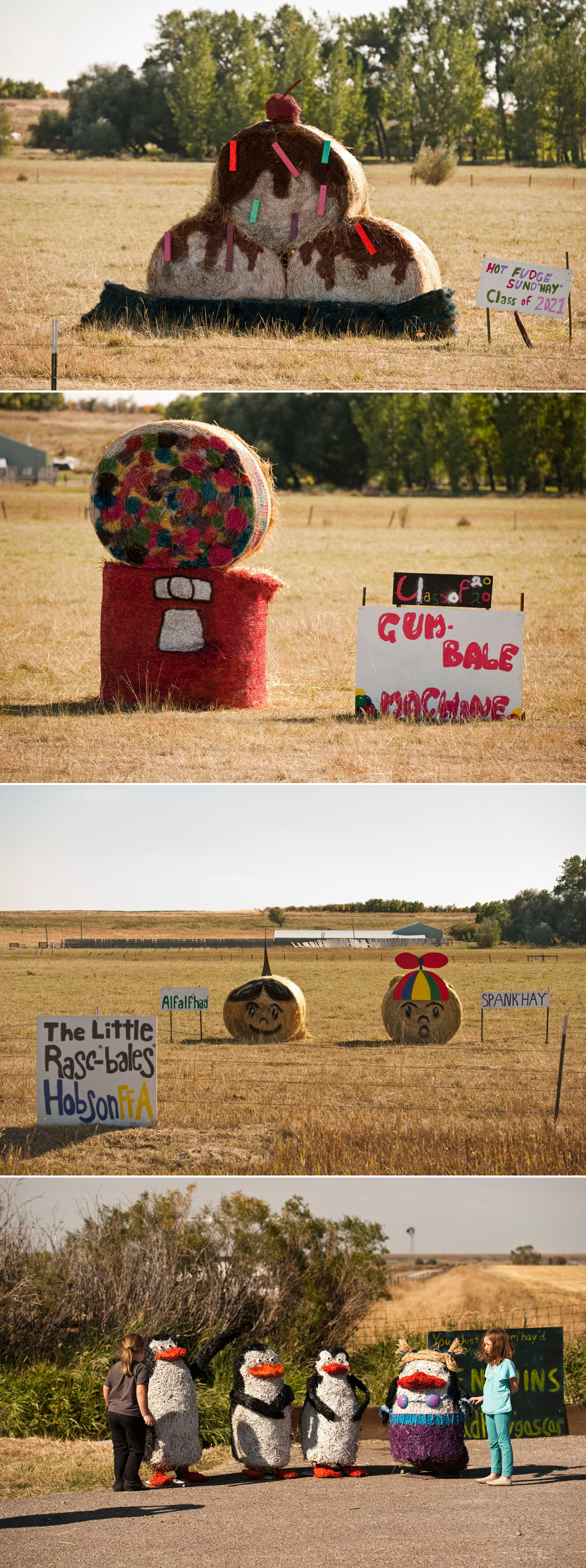 Central Montana Hay Bale Trail on a Montana food, travel, & culture blog